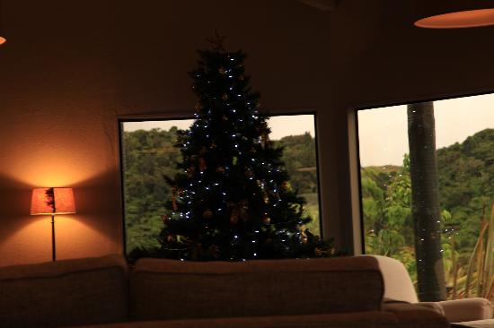 Xmas Tree at Solitaire Lodge