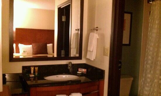 Hyatt Place Indianapolis Airport: vanity (small closet is to the left)