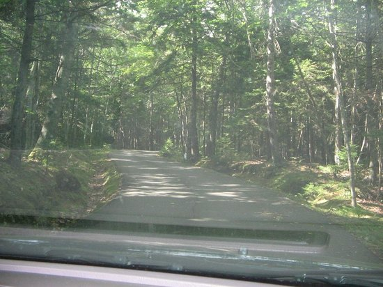 Southport, ME: The narrow road to the property