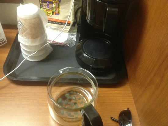 Sleep Inn & Suites Riverfront - Ellenton: Moldy Coffee Pot