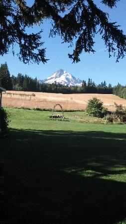 Parkdale, OR: view from the front lawn