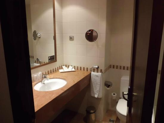 Magic Canillo Resort Hotel and Apartments: Lavabo
