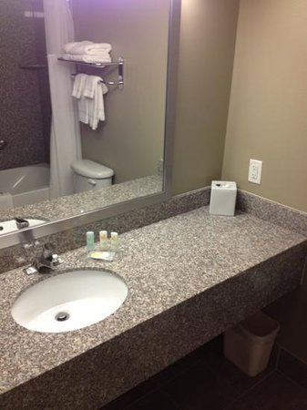 Quality Inn &amp; Suites Near Fairgrounds Ybor City: Large Clean Bathroom