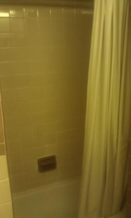 Chateau Motor Lodge: shower