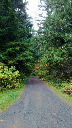 A Hidden Haven Bed and Breakfast: The driveway into Hidden Haven