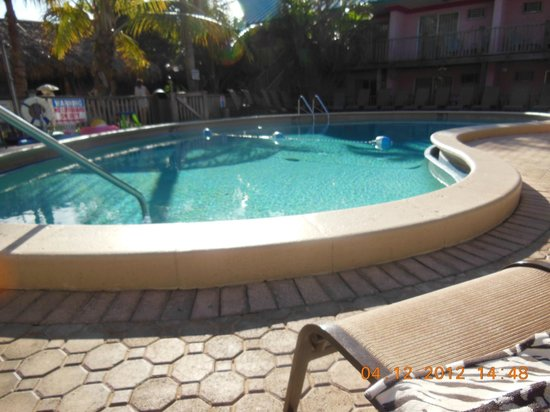 Fawlty Towers Resort Motel: Lazy days by the pool