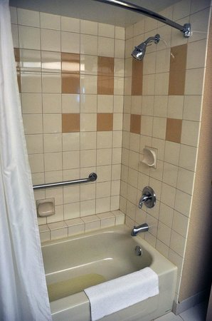 Four Points by Sheraton Winnipeg International Airport: Tub & shower - could use some new grout, but basically clean
