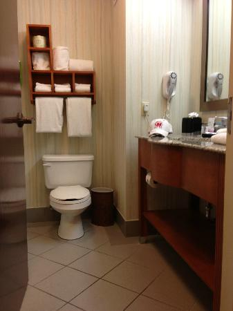 Hampton Inn Bardstown: Bathroom