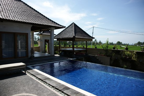 Villa Agung Khalia: Swimming pool and patio during day time