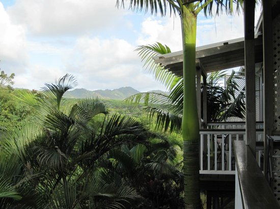 Lawai, HI: Mountain views from balcony