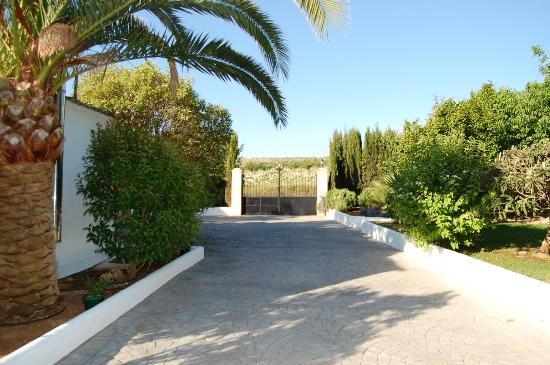 Cortijo Las Vinas - Country House