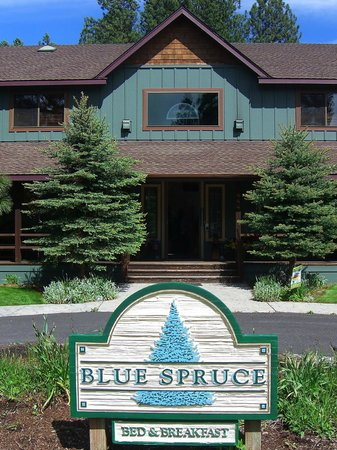 Blue Spruce Bed and Breakfast