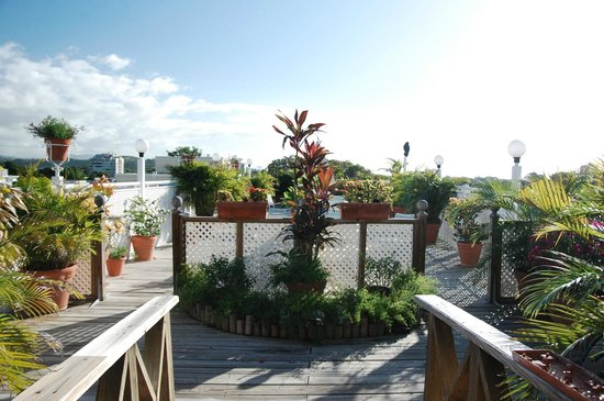 Hotel Melia Ponce: Roof deck