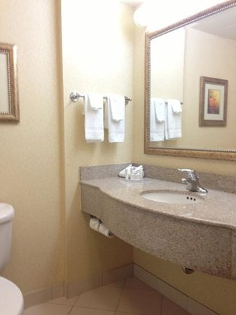 Fairfield Inn & Suites Toronto Airport: Bathroom