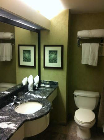 Millennium Hotel Broadway: Previous Room Bathroom