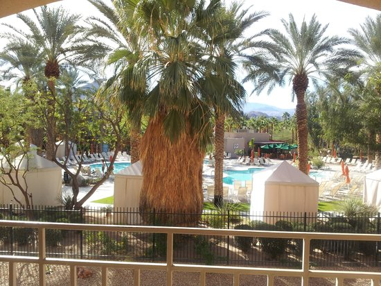 Hyatt Palm Springs: pool view