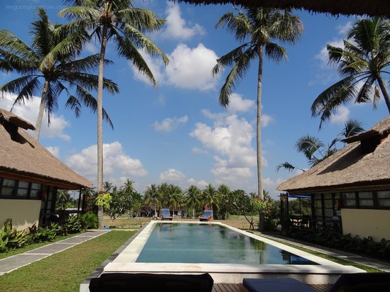Lodtunduh Sari: Pool area