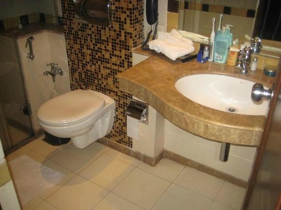 Lazylagoon Sarovar Portico Suites: bathroom