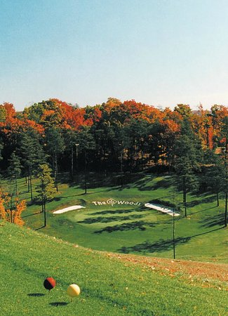 Hedgesville, WV: Stony Lick Golf Course