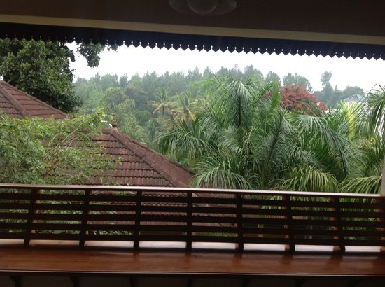 The Elephant Court Thekkady: view from room