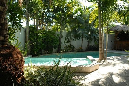 Pineapple Point Guest House and Resort: Grand Villa Pool Area