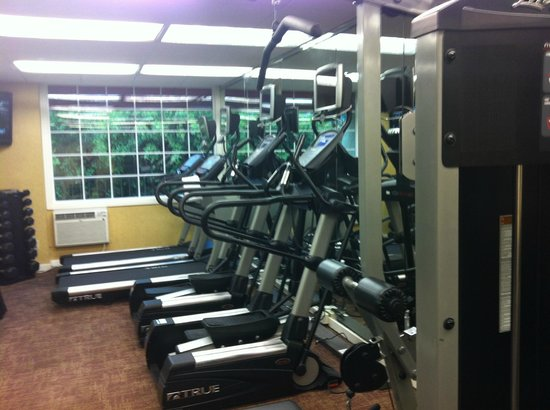 Le Parc Suite Hotel: Small but effective gym