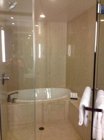 combined bath and shower picture of aria resort amp casino eagle bath ws 608p steam shower and whirlpool bathtub