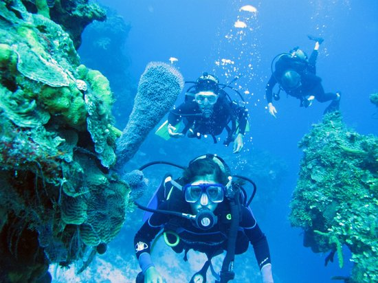 Cancun scuba center mexico hours address attraction for Dive centres