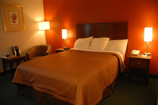 Timmins Inn & Suites: Main Floor Queen Room