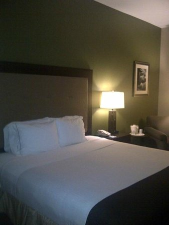 Holiday Inn Express Hotel &amp; Suites Phoenix-Glendale: Bedroom