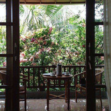 Jawi House & Painter: View from the smaller room. So nice.