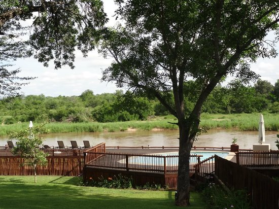 Sabie River Bush Lodge: jardin