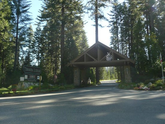 Drive way into tenaya lodge for Fish camp yosemite