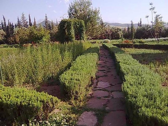 Veil Des Sens Picture Of Jardin Bio Aromatique Nectarome Marrakech Tripadvisor