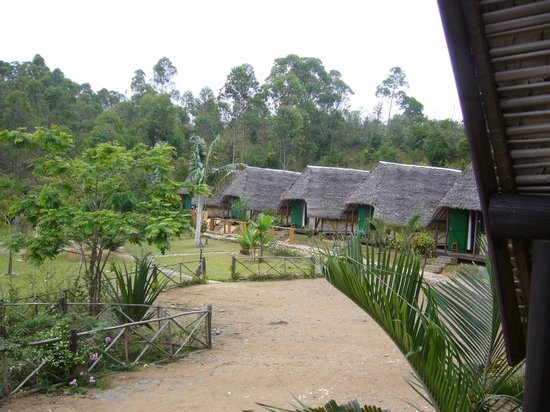 Andasibe Forest Lodge