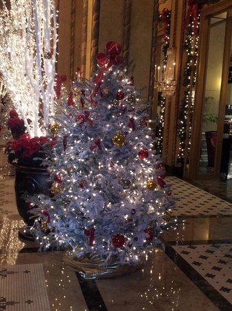 The Roosevelt New Orleans, A Waldorf Astoria Hotel: Happy holidays at the Roosevelt Hotel