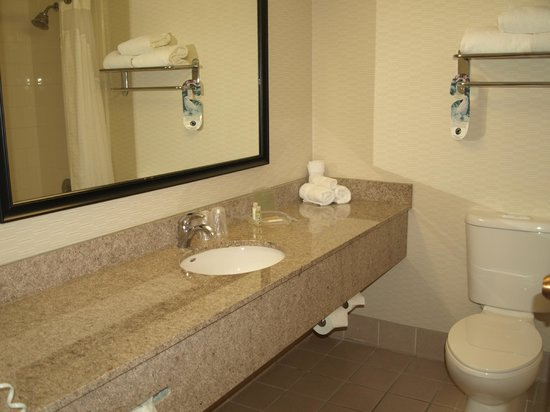 Holiday Inn San Antonio International Airport: Bathroom
