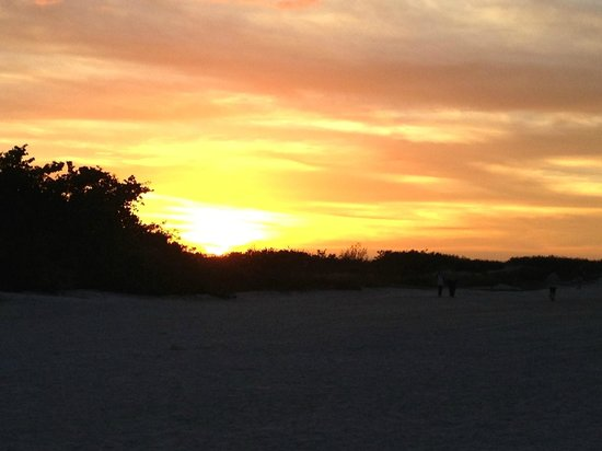 Wyndham Garden Fort Myers Beach: Sunset view from hotel with wildlife preserve on the left.