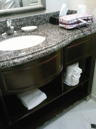 Holiday Inn Daytona Beach LPGA Boulevard : Bathroom vanity