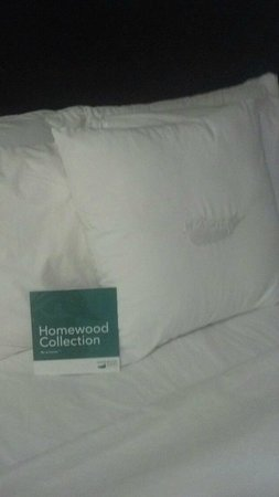 Homewood Suites by Hilton Lake Buena Vista-Orlando: Bed