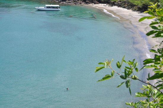 Ti Kaye Resort & Spa: clear water with other dive boats visiting the reef