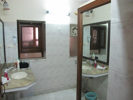 Hotel Meghniwas: The mirror in the bathroom