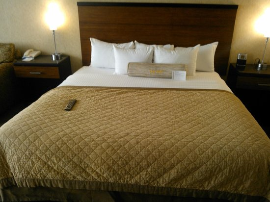 Wyndham Garden Hotel - Philadelphia Airport: Comfy!