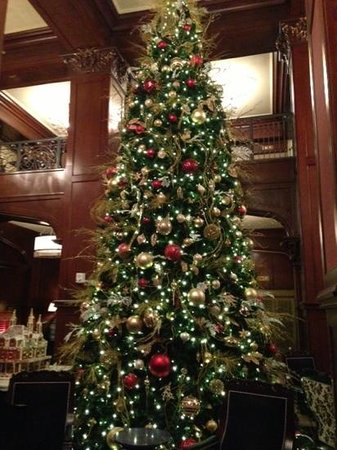 The Skirvin Hilton Oklahoma City: Christmas tree at the Skirvin Hotel