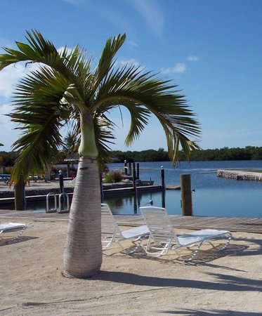 Grassy Key RV Park & Resort