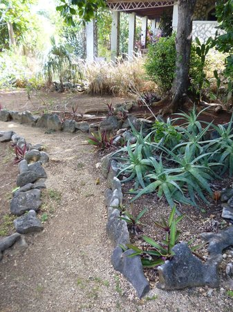Jackie&#39;s on the Reef: Landscaped paths