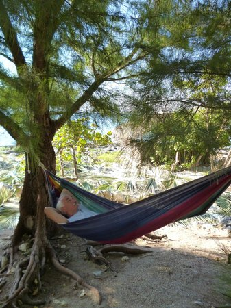 Jackie&#39;s on the Reef: One of several hammocks