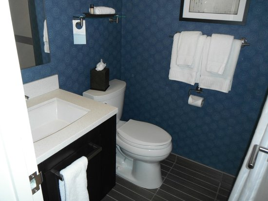 Liaison Capitol Hill DC–an Affinia hotel: Bathroom