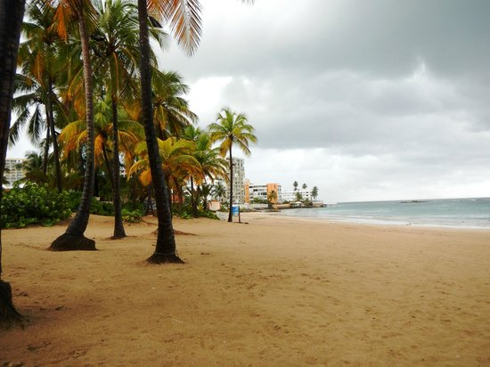 Ritz-Carlton San Juan Hotel, Spa & Casino: Beach