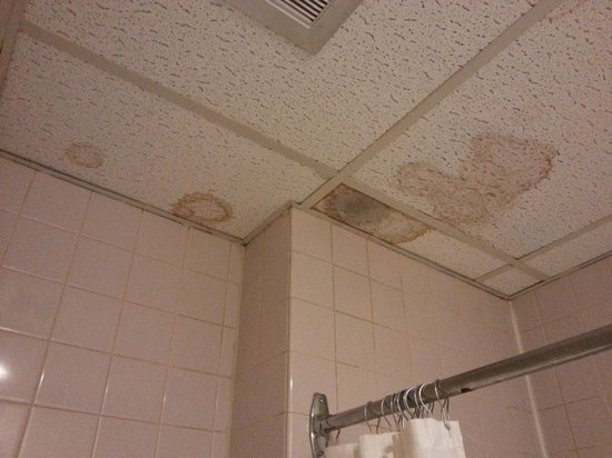 Wellington Hotel Sherbrooke: Bathroom ceiling.